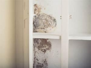 Schimmel Im Schrank : schimmel im kleiderschrank schimmel im schlafzimmer die sachverst ndige zeigt wo es schimmel ~ Yasmunasinghe.com Haus und Dekorationen
