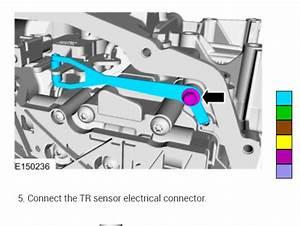 Transmission Range Sensor Location  Cannot Find The