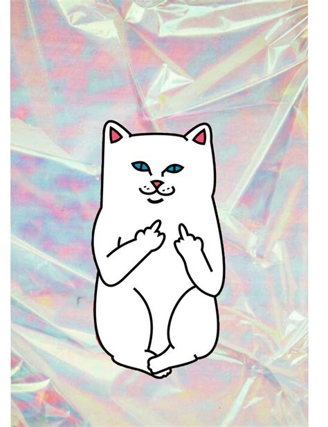 Aesthetic Cat Wallpaper Iphone by Ripndip Cat With Hologramy Background Ripndip Wallpaper