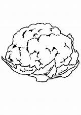 Cauliflower Coloring Vegetable Sheets Printable Sketch Template Indiaparenting sketch template