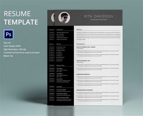 Creative Resume Templates Free Word by Free Creative Resume Templates Word Shatterlion Info