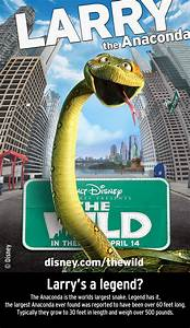 Wild The Wild Character Posters And Facts  U2013 Animated Views
