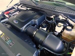 2004 Ford Expedition Eddie Bauer 4 6 Liter Sohc 16
