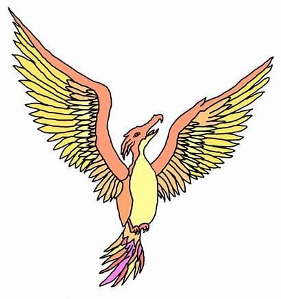 Phoenix Clipart Sketching Transparent Sketch Scheme Basic