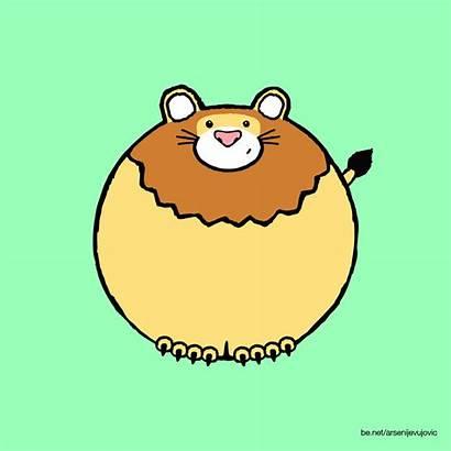 Animation Gifs Lion Zoo Animated Illustration Animals