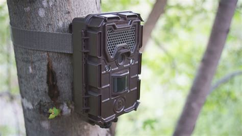 bushnell trail bushnell trophy hd essential e2 12mp trail review