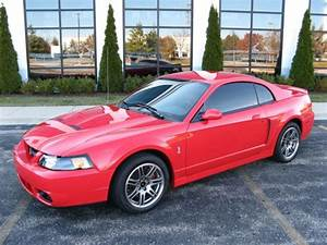 Used 2003 Ford Mustang SVT Cobra 10th Anniversary Terminator for sale
