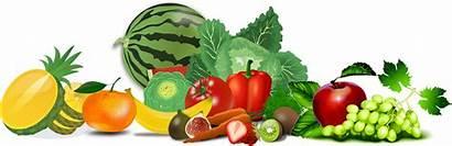 Individual Vegetables Vegetable Fruit Clipart Transparent Webstockreview