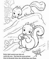 Squirrel Coloring Animals Kb sketch template