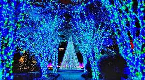 Top, 10, Christmas, Light, Displays, In, The, Most, Popular, Southern, Cities, U2013, Country, Music, Nation