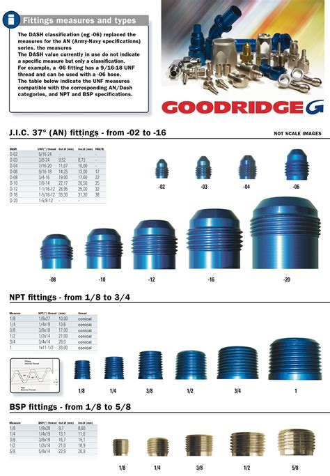 An sizes are very simple. Hoses & Fittings - Gieffe Racing