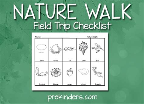 forest theme activities for pre k amp preschool 194 | nature walk checklist