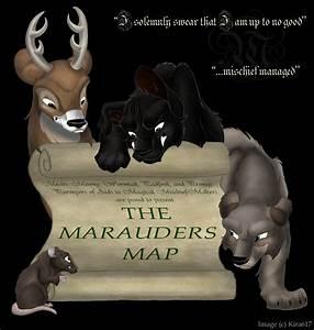 Maraunders - Marauders Photo (273222) - Fanpop