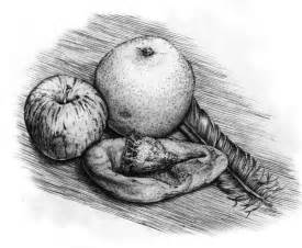 Natural Form Drawing