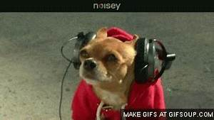 Listening GIF - Find & Share on GIPHY
