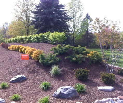berm landscaping pictures landscape berm in brighton michigan traditional landscape detroit by landforms
