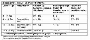 Alter Berechnen Baby : jungigel igelzentrum ~ Themetempest.com Abrechnung