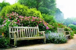 Nature Plants Flowers Nature Landscaping Flower Garden ...
