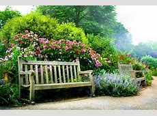 Nature Plants Flowers Nature Landscaping Flower Garden