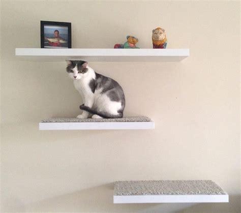 floating cat shelves diy floating cat shelves pet stuff pinterest