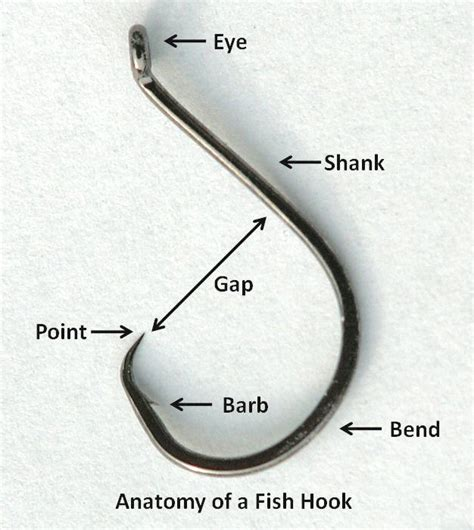 fish hook wikipedia