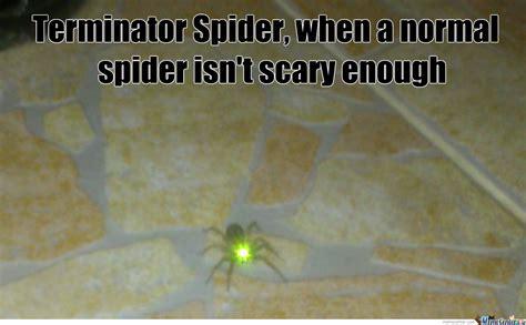 Cute Spider Memes - cute spider by strule meme center