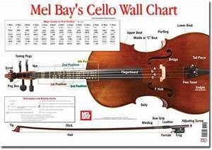 Cello Wall Chart By Martin Norgaard Music Learning