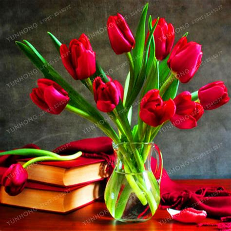 buy wholesale tulip bulbs for sale from china tulip