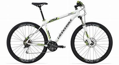 Cannondale Trail Bike Mountain Mtb Vtt 29er