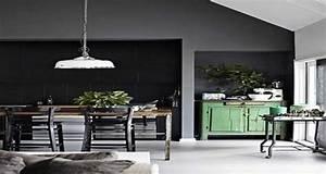 Gris anthracite couleur tendance pour la peinture cuisine for Idee deco cuisine avec facade cuisine gris anthracite