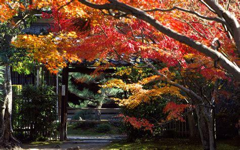 japanese desktop wallpaper  images
