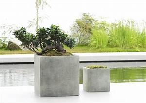 Pflanzkübel Beton Selber Machen : beton pflanzk bel selber machen zuk nftige projekte pinterest garten pflanzen und k bel ~ Orissabook.com Haus und Dekorationen