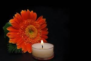 Trauer Blumen Bilder : kerze blume trauer kostenloses foto auf pixabay ~ Frokenaadalensverden.com Haus und Dekorationen