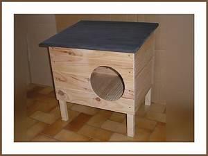 Cabane Pour Chat Exterieur Pas Cher : niche a chat cabane en bois chat niche pour chat et enclos chatterie animaloo niche chat avec ~ Farleysfitness.com Idées de Décoration