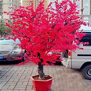 Sakura Baum Kaufen : rot zimmer kunstpflanzen und weitere wohnaccessoires g nstig online kaufen bei m bel garten ~ Frokenaadalensverden.com Haus und Dekorationen