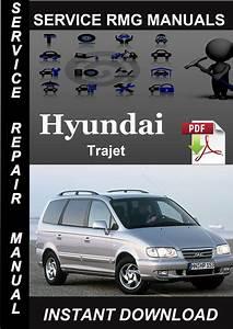 Hyundai Trajet Service Repair Manual Download