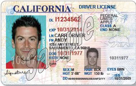 Dmv New California Licenses Meant To Increase Safety, Not Deportations Kpbs