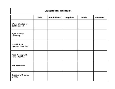 Animal Classification Worksheet Middle School Worksheets For All  Download And Share Worksheets
