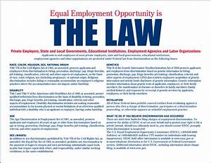 Anti Discrimination Policy Template Employment Discrimination Law In The United States