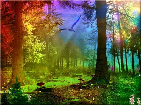 abstract rainbow forest abstract fantasy hd desktop