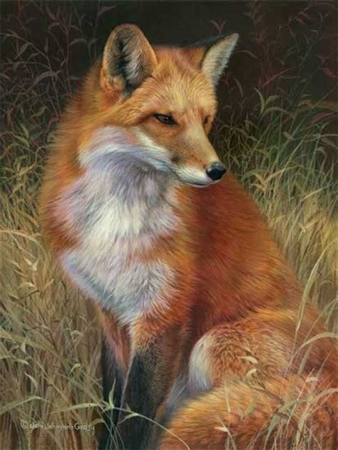 red fox painting foxes pinterest foxes animal