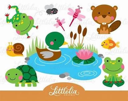Pond Clipart Animal Frog Turtle Friend Animals