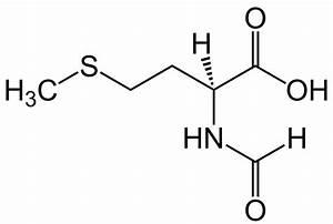 N-Formylmethionine - Wikipedia