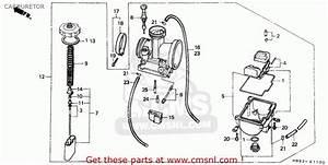 Honda Trx 250 Carburetor Schematic  Honda  Wiring Diagram