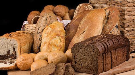 home design companies home bakehouse bread company bakehouse bread company