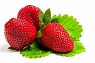 Dog Eating Strawberry