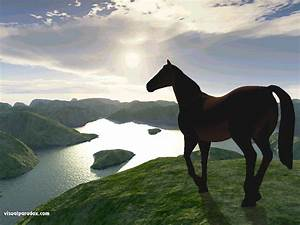 3D Horse Wallpaper - WallpaperSafari