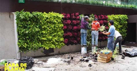 Vertical Garden Design Diy by Cara De Planta Is A Diy Kit That Lets You Build Your Own