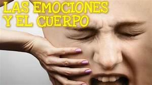 Las Emociones y el Cuerpo | Dolor Emocional | Silviad8a ...