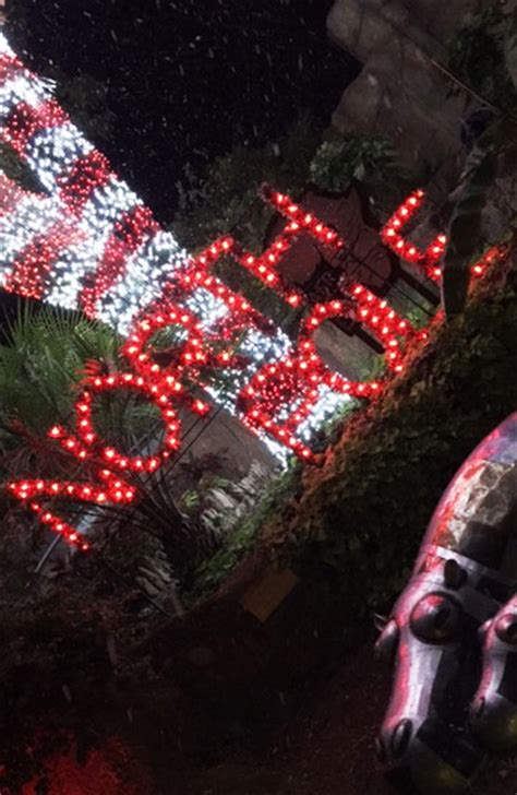 how much does zoo lights cost in phoenix zoo lights wild holiday fun at the san antonio zoo